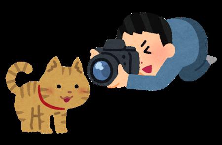 https://ritztantei.com/mt_img/camera_cat.png